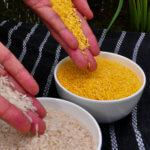 Czy żywność GMO jest bezpieczna?